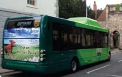 Natural Gas bus in UK