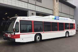Nova CNG Bus for Red Deer Transit