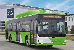 MAN Lion's City CNG 12m