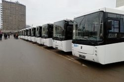 NEFAZ 5299-40-51 CNG buses for Rostov-on-Don