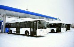 NEFAZ CNG Buses for Vologda