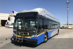 New Flyer CNG buses for TransLink in Surrey BC
