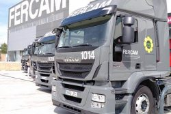 FERCAM Logistics and Transport (Italy) with IVECO Stralis