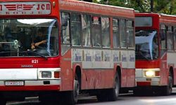 Macedonia buses