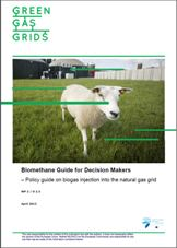 GreenGasGrids - Biomethane Decision-makers
