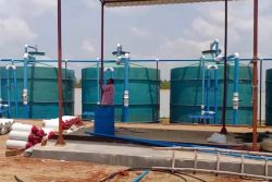 Phoenix Biogas Plant under construction at Bipul Roy