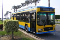 MAN CNG Passenger Bus for CTA